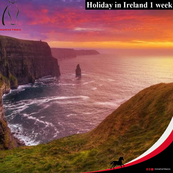 ENG Equestrian Holiday in Ireland 1 week