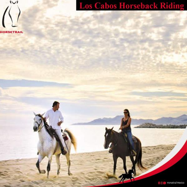 ENG Horseback Riding Adventures horsetrailmexicotours