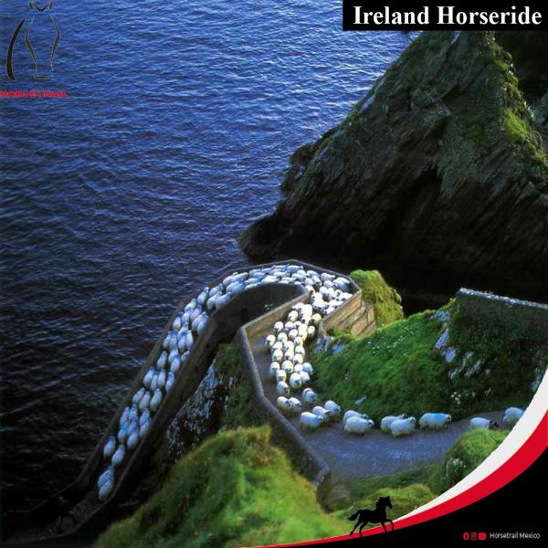 ES Ruta ecuestre de Irlanda 2019