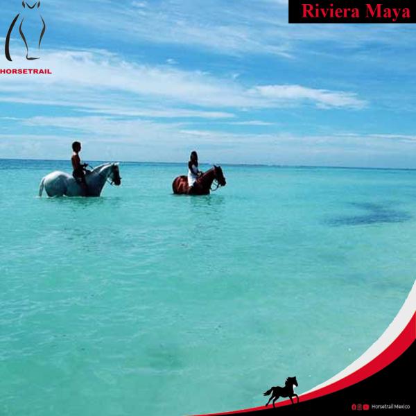 Horseback Riding Arqueological tour at the Riviera Maya